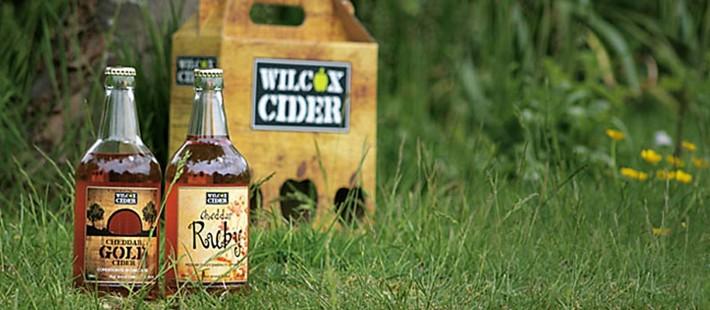 wilcox cider bottle on grass
